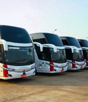 Transporte rodoviário aposta em turismo responsável e promoções